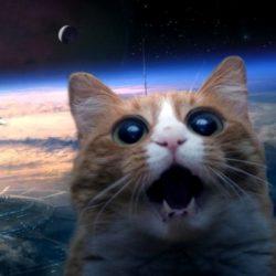 NASA-космос-астрономия-планета-рецензия-соцсети-поп-культура-общество-08689
